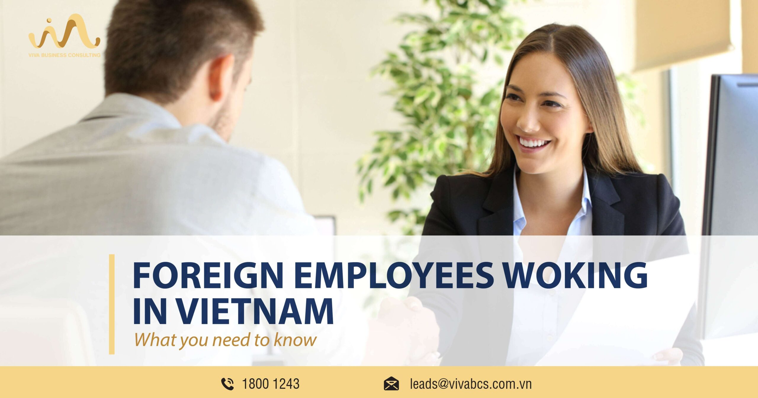 Foreign employees working in Vietnam