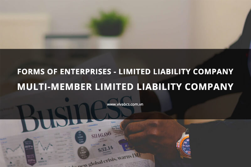 Limited liability company