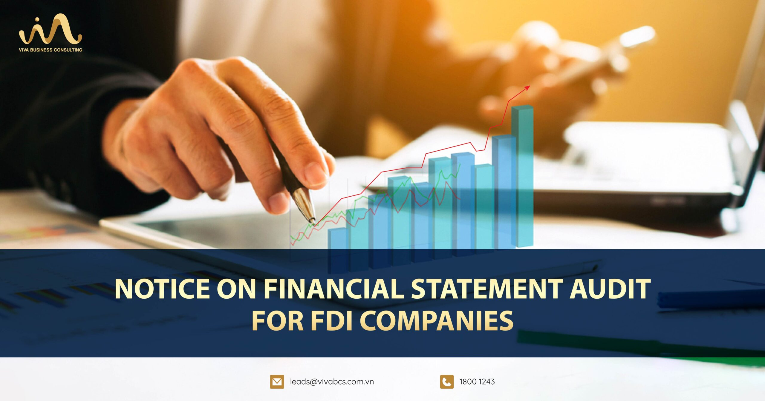 Notice on financial statement audit for FDI companies