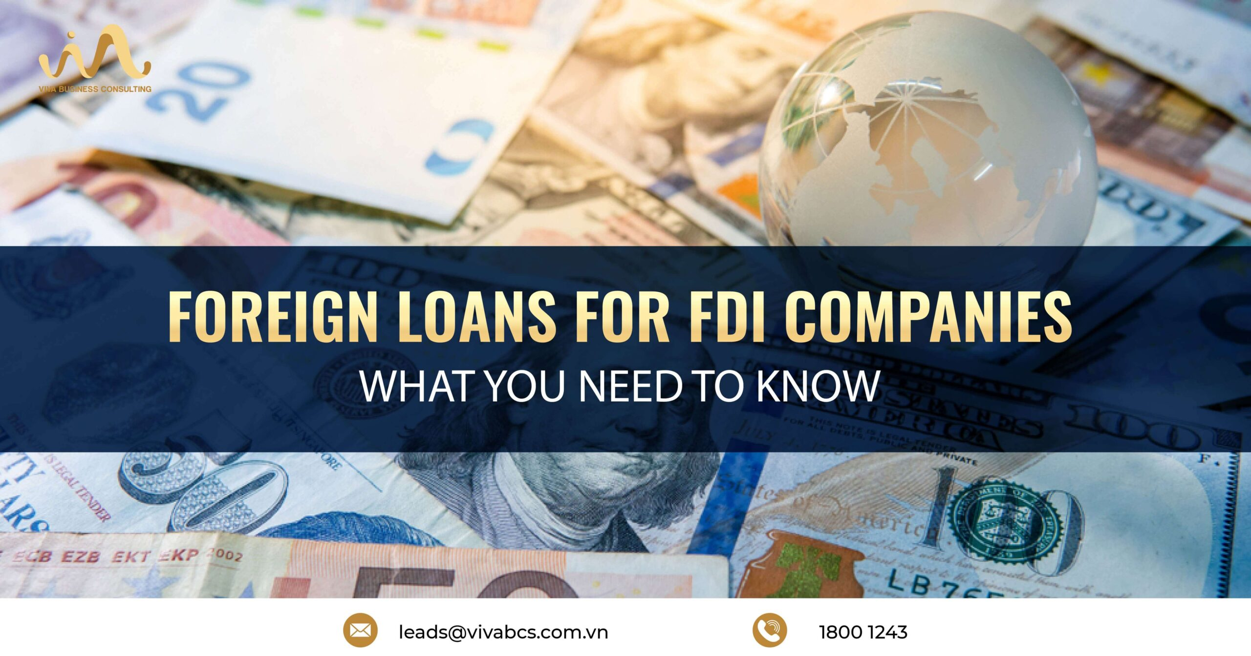 Requirements For Taking Foreign Loans Applied To FDI Companies - Foreign Loans subject to registration with the State Bank