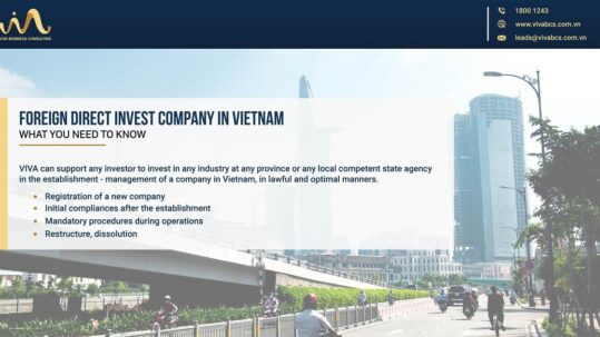Foreign direct invest company
